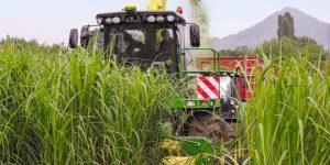 klimanet-landwirtschaft-ernte-1100