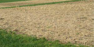 klimanet-landwirtschaft-erosionsschutz-1100